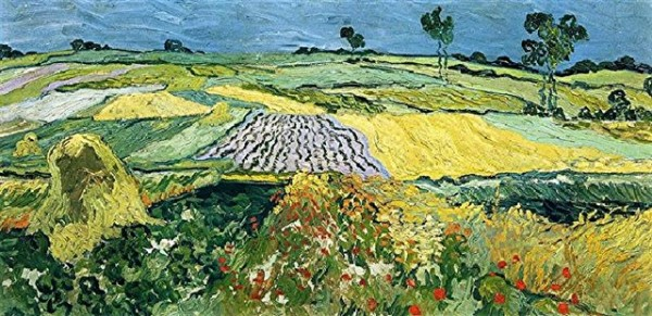 fields-near-auvers.jpg