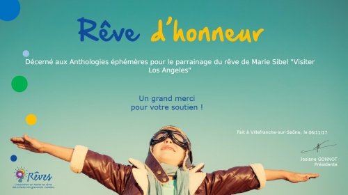 association rêves,quichottine,thebookedition,enfants malades